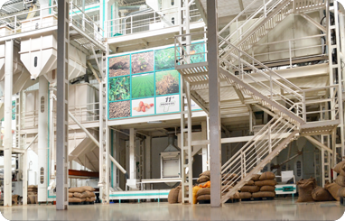 Peanut Processing unit for Java peanuts