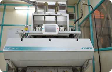 Peanut Processing unit for peanut flour