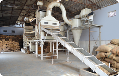 Peanut Processing unit from india